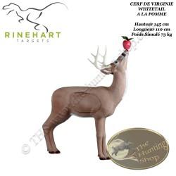 RINEHART Cible 3D Cerf de Virginie Whitetail à la pomme en mousse pour le tir à l'arc