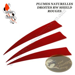 GATEWAY FEATHERS Plumes naturelles unies RW Shield